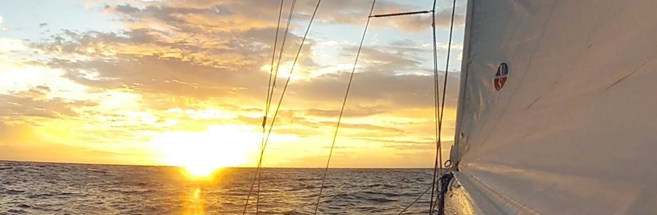 Barefoot Offshore Sailing School